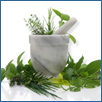 Medicinal Herbs Plants Mortar & Pestle